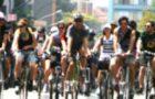 Livro Mobilidade por Bicicleta no Brasil