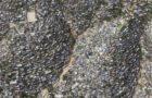 O mercado imobiliário e a financeirização do espaço urbano no México