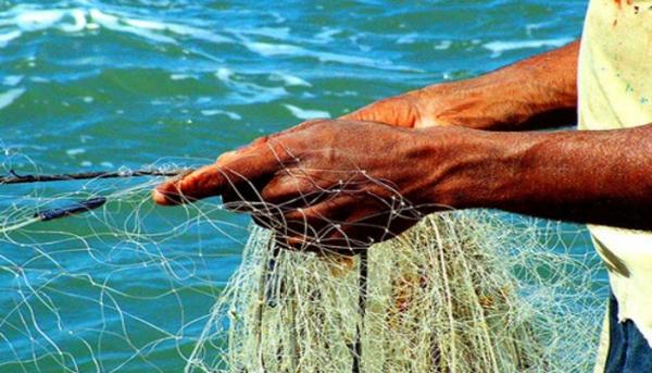 Pescadores da Bacia de Campos: a saúde e a (in)segurança alimentar