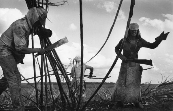 Riqueza e miséria do trabalho no Brasil