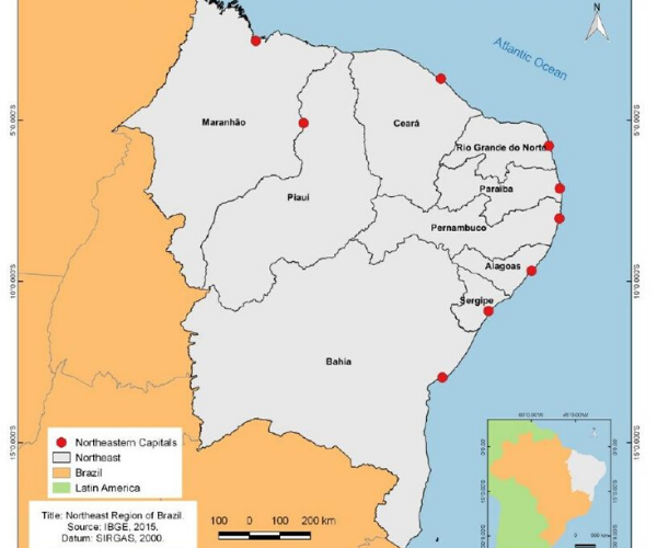 Interfaces entre Vulnerabilidades, Governança, Inovação e Capacidade de Resposta à COVID-19 no Nordeste Brasileiro