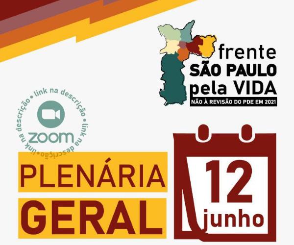 1ª Plenária Geral Virtual da Frente São Paulo Pela Vida