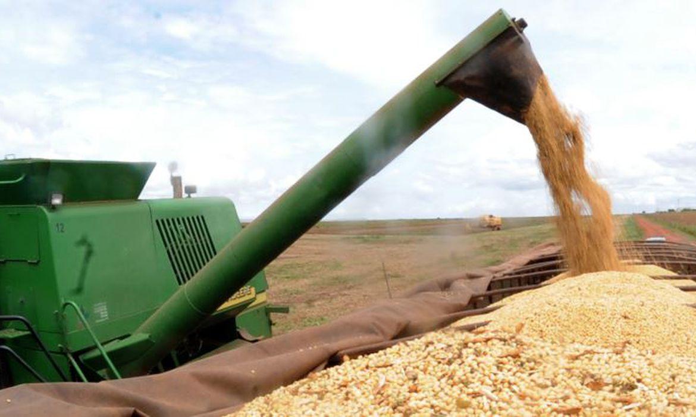 Mitos e nós do agronegócio no Brasil